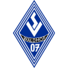 Logo Team มานน์ไฮม์
